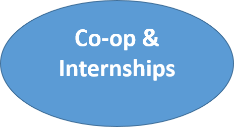 co-op & internships